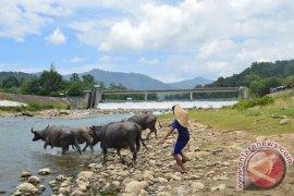 Dewan dorong penuntasan irigasi Lhok Guci Aceh Barat