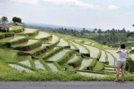 Pemerintah Jepang sumbang turbin air petani Tabanan