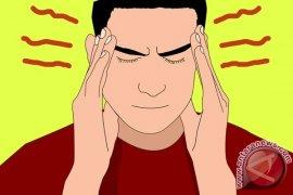 Manggis Bantu Sembuhkan Skizofrenia