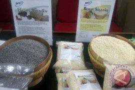 BPPT kembangkan produk beras non-padi