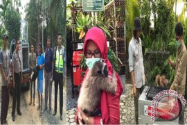 SBI Evacuates Protected Animals