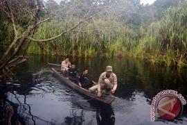 Singapura tawarkan bantu restorasi lahan gambut Sumatera Selatan