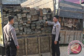 Polresta Jambi amankan dua truk kayu ilegal