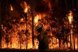 Pantai Timur Australia berjuang padamkan lebih 100 kebakaran hutan