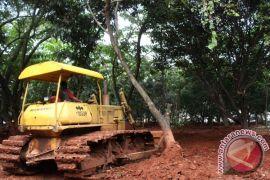 Yogyakarta akan beli lahan  untuk ruang terbuka hijau