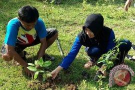 4.128 Pelajar Gorontalo Tanam Pohon Serentak