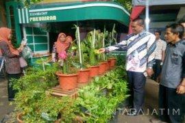 Disperta Probolinggo Dorong Kembangkan Produk Hortikultura di Kecamatan
