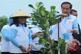 Presiden minta semua pohon yang ditanam dipelihara, warga ragu