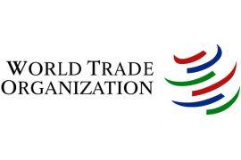 WTO prediksi momentum perdagangan global moderat pada kuartal pertama