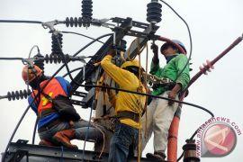 PT PLN rugi Rp1,1 miliar tiap bulan karena pencurian listrik