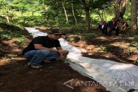 Retakan Lereng Pegunungan Argopuro Rawan Longsor