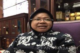 Risma : Minat Warga Surabaya Bercocok Tanam Hidroponik Tinggi