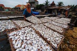 Produksi Ikan Kering Menurun