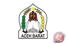 Pemkab Aceh Barat upayakan perikanan budidaya menjadi pangan alternatif
