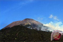 Sebagian hutan lereng Gunung Slamet terbakar