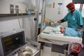 Kondisi bayi kembar siam Probolinggo mulai stabil