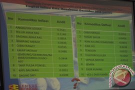 Harga Tiket Pesawat PenyumbangTertinggi Inflasi Manokwari