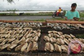 """Melihat ikan olahan """"keumamah"""" khas Aceh"""