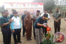 Kodam-PLN Luncurkan Program Penanaman Pohon di Maluku-Maluku Utara