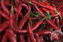 Harga cabai keriting merah berbalik terus turun, kini Rp15.000