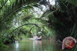 Sungai Martapura saat ini tidak dapat diolah air bersih karena asin