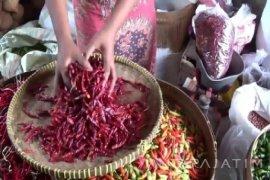 Penjualan Cabai di Madiun Merosot
