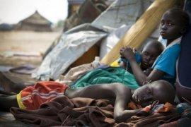 Kebakaran hutan di Sudan Selatan, empat desa musnah, 33 tewas