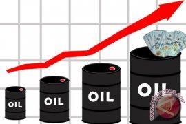 Harga minyak mentah sentuh titik tertinggi