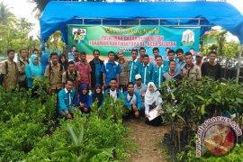 Pemuda Aceh Selatan dilatih pembibitan holtikultura