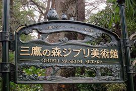 Selain Disneyland Tokyo, Museum Ghibli juga tutup akibat corona