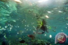 Taman Laut Olele Ramai Walaupun Gelombang Tinggi