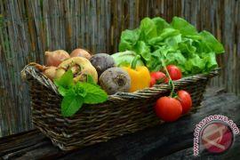 Apel dan sayuran hijau turunkan risiko terkena penyakit paru-paru