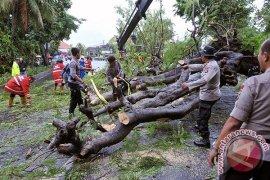 Hati-Hati Cuaca Ekstrem di Buleleng, Bangli dan Karangasem