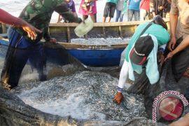 KKP pastikan pengurusan ijin untuk nelayan hanya lima hari