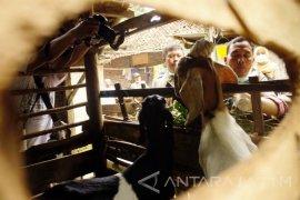 Petugas Suntik Antibiotik Ratusan Ternak Antisipasi Antraks (Video)
