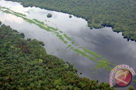 Buah manis dari 30 tahun kesetiaan menjaga hutan
