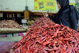 Wagub Jatim: Cabai Impor Tak Mengandung Bahan Berbahaya