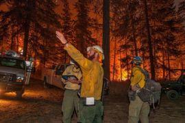 Korban jiwa akibat kebakaran hutan di California naik jadi 15