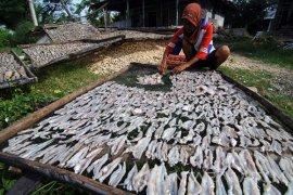 Produksi Ikan Asin Naik