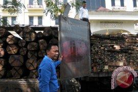 Penangkapan Kayu Ilegal Logging