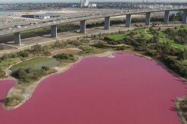 Danau di Australia berubah jadi pink