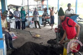 Petani di Kotabaru Dihimbau Menggunakan Pupuk Organik