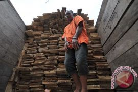 Polisi amankan tiga truk kayu hasil pembalakan liar