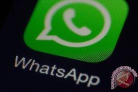 WhatsApp buat aplikasi untuk iPad?