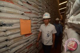 Bulog Sulteng salurkan beras 200  ton untuk korban gempa