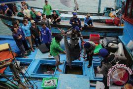 Sementara ini nelayan Kulon Progo bertani saja