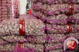 Stok Bawang Putih Impor Babel 345 Ton