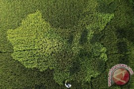 Dubes Tiongkok: hubungan bilateral alami kemajuan signifikan