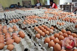 Pemkab Sambas Gelar Pasar Murah Telur Ayam