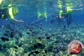 Menko Kemeritiman Terima Permintaan Daerah Kelola Bunaken